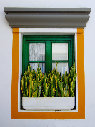 Fenster in Puerto de Mogan
